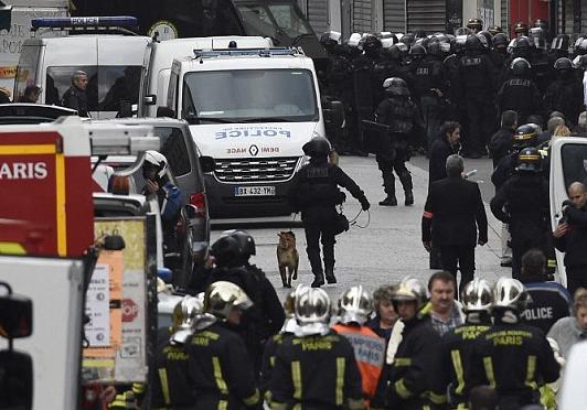 #JesuisunChien ,RIP: Not all heroes are human: Diesel french police dog died in raid//Diesel, la chienne morte en héroïne pour la France