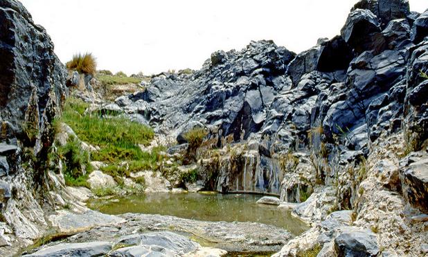 S'évader: Les oasis d'Algérie