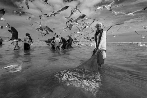 FISHERMAN FROM TACH Ali Alghafri (OM)