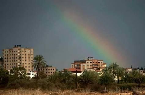 rainbow gaza arc en ciel